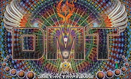 What is DMT?