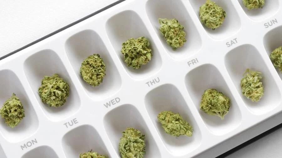 5 remedios que maconha pode substituir smoke buddies Conheça 5 remédios que a maconha pode substituir