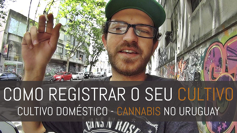 como registrar o seu cultivo domestico uruguay eu a maconha e uma camera smoke buddies capa Eu, a Maconha e uma Câmera!: Como é registrar um cultivo doméstico no Uruguai?
