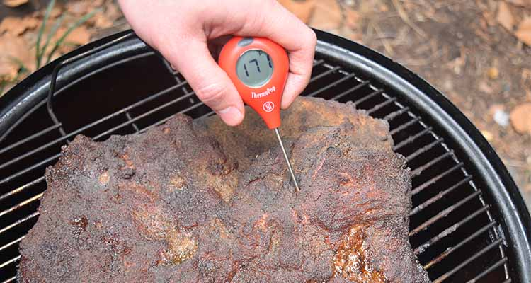 ThermoWorks Thermopop Thermometer Review