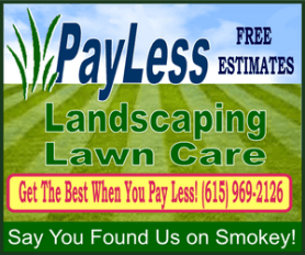 pay less lawn 300