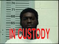 lorenzeo custody (1)