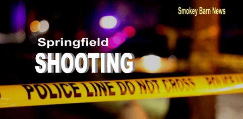 Springfield shooting slider