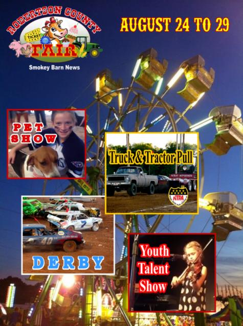 fair poster 2015