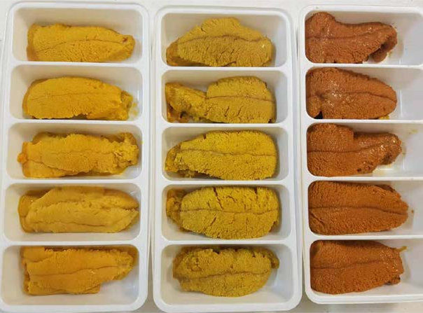 Fresh Wild Sea Urchin Roe - Uni