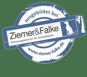 ZF Logo2