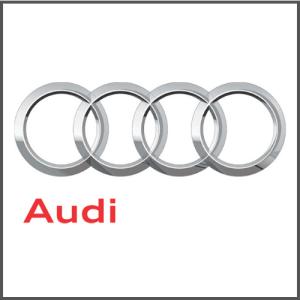 Audi Boot Protectors