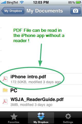 PDF file DropBox in iPhone
