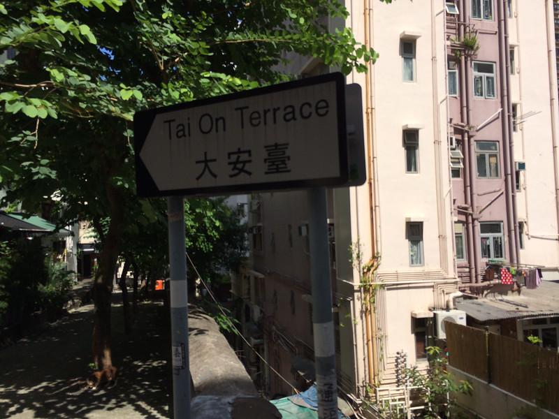 單戀雙城 Tai On Terrace