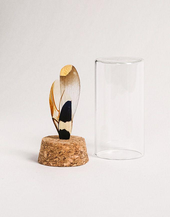 Verloren vleugels in glazen buisje