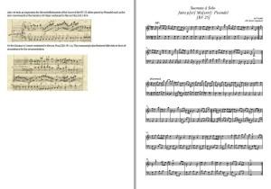 """Vivaldi – Sonata in G major """"per Pisendel"""" RV 25 (PDF)"""