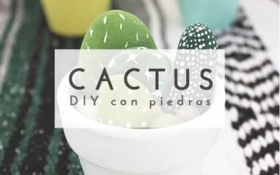 DIY CACTUS CON PIEDRAS