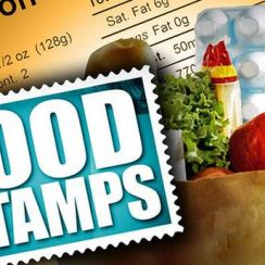 Florida Food Stamp Office