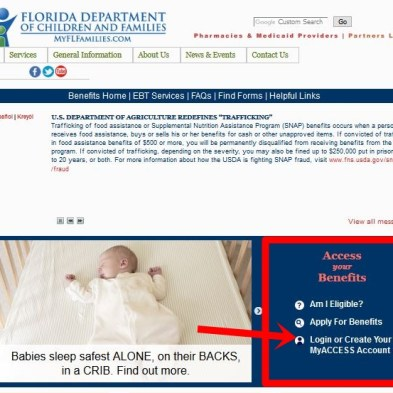 How To Check Florida Access Card Balance - www myflorida com