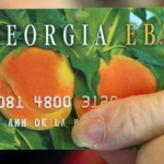 Georgia Food Stamps Income Limit Eligibility