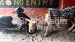 Advertisement, Animal, Art, Automobile, Cattle, Clothing, Donkey, Gravel, Human, Land, Motor Scooter, Painting, Person, Sand, Scooter, Wall