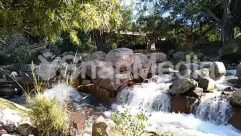 Animal, Backyard, Building, Bush, Chair, Cottage, Countryside, Creek, Food, Furniture, Garden, Grass, Hotel, House, Housing, Human, Jungle, Land, Landscape, Lawn, Leisure Activities, Meal, Nature, Outdoors