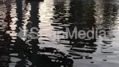 Water,Ripple,pond