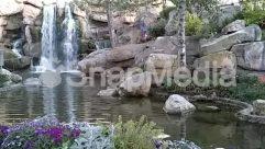 Wilderness,Waterfall,Water,Stream,Rock,River,Pond,Plant,Nature,Landscape,Lake,Lagoon,Creek,Animal,water fall