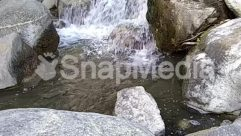 Stream,River,Creek,Coast,Cliff,Bird,Animal