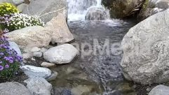 Water,Stream,River,Pond,Creek