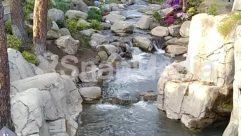 Blossom, Building, Cottage, Countryside, Creek, Field, Flower, Grassland, House, Housing, Ice, Land, Landscape, Nature, Outdoors, Path, Petal, Plant, Pond, Rainforest, River