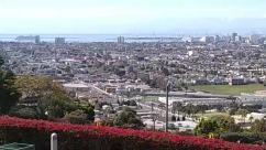 Aerial View, Building, Bush, City, Downtown, Housing, Metropolis