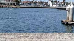 Barge, Battleship, Boat, Building, Bumper, City, Coast, Cruiser, Dinghy, Dock, Downtown, Harbor, House, Housing, Human, Marina, Military, Nature, Navy, Ocean, Outdoors, Person, Pier