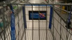 Basket, Mammal, Pet, Prison, Shopping Basket, Shopping Cart, store, walmart
