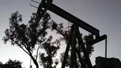 pump jack,Tree,Silhouette