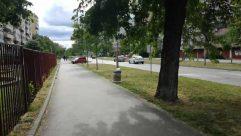 Path, Wheel, Machine, Urban, Building, Town, City, Street, Road, Transportation, Automobile, Car, Vehicle, Plant, Tree