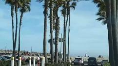 Person, Tree, Plant, Palm Tree, Building, Housing, Condo, Urban, City, Town, Vehicle, Automobile, Car, Transportation, beach parking