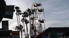 Ferris Wheel, Balboa fun zone, Person, Amusement Park, Theme Park