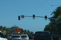Traffic Light, Light, Automobile, Vehicle, Car, Van, Caravan, Sedan, Tree, Plant, Building, Road, Urban, Housing, License Plate