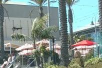 Plant, Building, Tree, Palm Tree, Arecaceae, Hotel, Shorts, Housing, House, Villa, Resort, People, Bird, Urban, Town