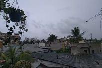 Balcony, Building, Condo, Housing, Plant, Urban, Town, City, Tree, Arecaceae, Palm Tree, Roof, Garden, High Rise, Neighborhood