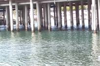 Water, Waterfront, Dock, Pier, Column, Pillar, Bridge, ocean