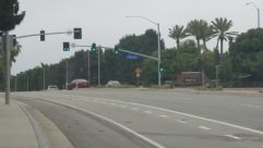 Traffic Light, Light, Road, Automobile, Vehicle, Car, Freeway, Highway, Plant, Vegetation, Wheel, Bird, City, Town, Building