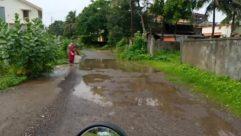 Road, Building, Urban, Town, Street, City, Path, Puddle, Wheel, Plant, Vegetation, Land, Automobile, Car, Tree