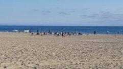 Water, Ocean, Sea, Shoreline, Sand, Coast, Beach, Bay, Landscape, Soil, Bird, Sea Waves, Skin, Back, Vacation