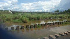 Water, Land, Road, Flood, Landscape, River, Panoramic, Plant, Vegetation, Field, Grassland, Weather, Building, Soil, Sky