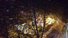 Light, Flare, Sunlight, Tree, Plant, Metropolis, Town, Building, City, Lighting, Leaf, Road, Vegetation, Landscape, Downtown