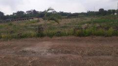 Ground, Land, Field, Grassland, Countryside, Soil, Rural, Plant, Savanna, Farm, Vegetation, Pasture, Wilderness, Tree, Grass