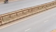 Vehicle, Automobile, Car, Road, Motorcycle, Freeway, Wheel, Bumper, Vegetation, Plant, Slope, Van, Helmet, Tire, Guard Rail