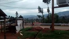 Building, Vehicle, Countryside, Bird, Housing, Motorcycle, Rural, Shelter, Wheel, Hut, Shack, House, Truck, Plant, Vegetation