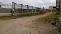 Road, Ground, Fence, Handrail, Banister, Plant, Path, Shorts, Building, Gravel, Dirt Road, Vegetation, Bridge, Tree, Bush