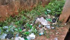 Trash, Plastic, Bag, Plastic Bag, Ground, Plant, Vase, Potted Plant, Jar, Pottery, Bird, Snow, Pollution, Planter, Brick