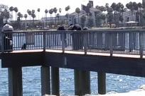 Water, Waterfront, Dock, Pier, Port, Building, Bridge, Railing, Boardwalk, Word, People, Angler, Fishing, Housing, Path