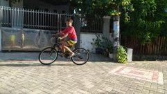Bike, Vehicle, Bicycle, Wheel, Riding Bicycle, Walkway, Flagstone, Cyclist, Sports, Sport, Sidewalk, Pavement, Shorts, playing