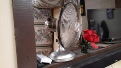 Lamp, Electric Fan, Flower, Plant, Rose, Blossom, Furniture, Chair, Petal, Screen, Electronics, Appliance, Glass, Tabletop, Home Decor